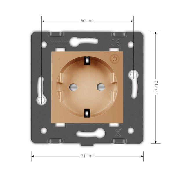 Модуль розетки электрической ZigBee (Wi-Fi) с заземлением защитными шторками 16A Livolo - 1